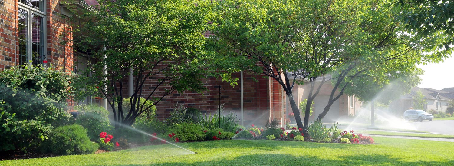 Watering Lawn with automated sprinkler
